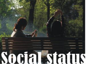 Social Status full explained overview