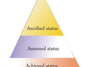 Social Status full explained overview