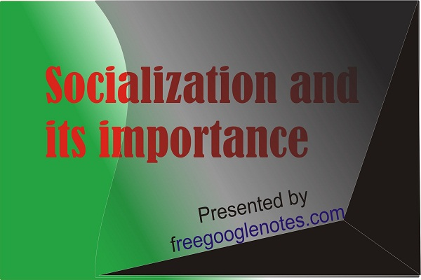 concept of socialization