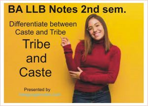 Differentiate between Caste and Tribe:Is it possible for a tribe to caste`